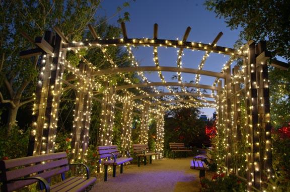 ogrod swiatlo lancuch